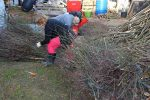 Heizen mit Biomasse - DIY mit wenig Geld Heizung bauen (Teil 1/4) Buendel abladen
