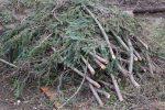 Heizen mit Biomasse - DIY mit wenig Geld Heizung bauen (Teil 1/4) Holz vom Nachbarn