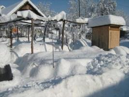 Entspannung pur im Winter hier bei Alten-Wohnheim & Landhotel im Permakulturgarten