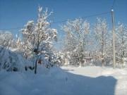 Wintereindrücke Permakultur Garten im Schnee, Schatten im Schnee