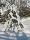Wintereindrücke Permakultur Garten im Schnee, Tippi im Schnee
