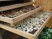 leckere Quitten- & Apfelprodukte im Solartrockner bei Quitte als Baumpatenschaft