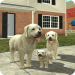 Download Dog Sim Online: Raise a Family  APK, APK MOD, Dog Sim Online: Raise a Family Cheat