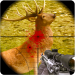 Free Download Deer Hunter 2018 1.13 APK, APK MOD, Deer Hunter 2018 Cheat