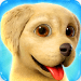 Free Download Dog Town: Pet Shop Game, Care & Play with Dog  APK, APK MOD, Dog Town: Pet Shop Game, Care & Play with Dog Cheat