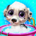 Free Download Puppy Pet Dog Daycare – Virtual Pet Shop Care Game APK, APK MOD, Cheat