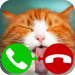 Download fake call cat 2 game  APK, APK MOD, fake call cat 2 game Cheat