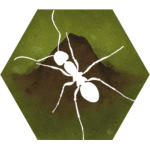 Free Download Finally Ants 2.42 APK, APK MOD, Finally Ants Cheat