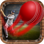 Free Download Onegame Cricket 2019 APK, APK MOD, Cheat