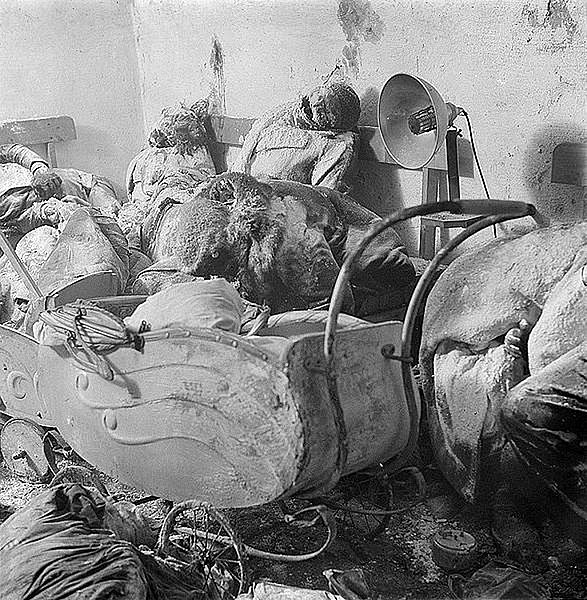 Datei:After the Allied terror bombing a German mother in death stares at her charcoaled twins in a baby carriage.jpg