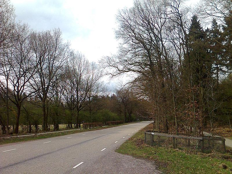 Datei:Die alte Straße von Arnheim nach Appeldorn, bei der Ortschaft Wüsterhof.jpg