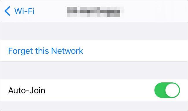 Vergiss dieses Netzwerk auf dem iPhone