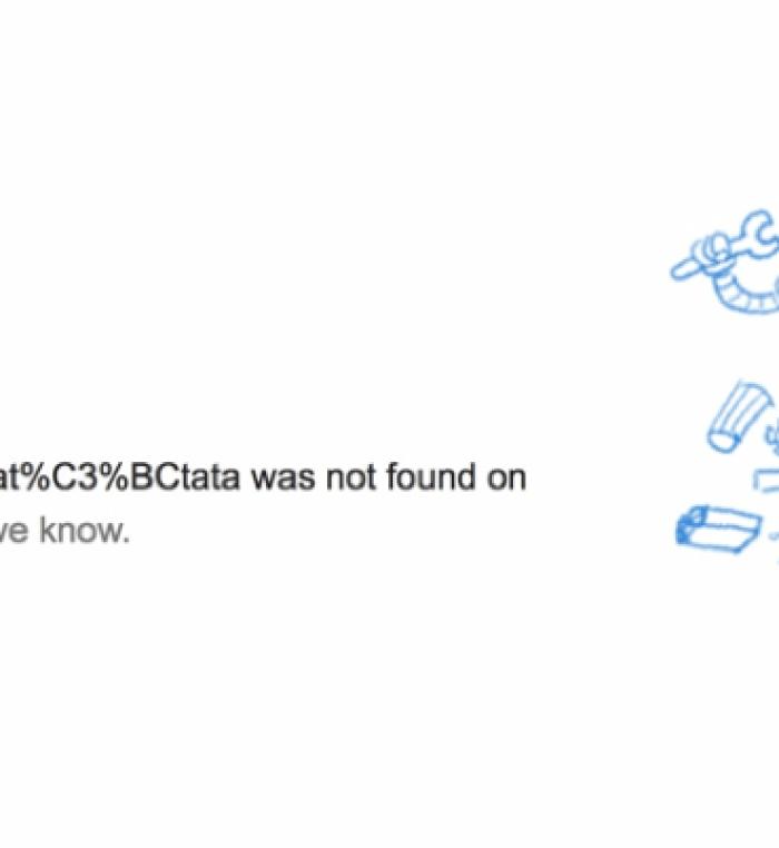 404-Seite von Google