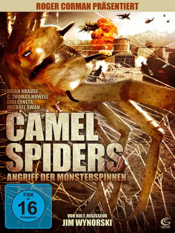 Camel Spiders  Angriff Der Monsterspinnen Bilder Und