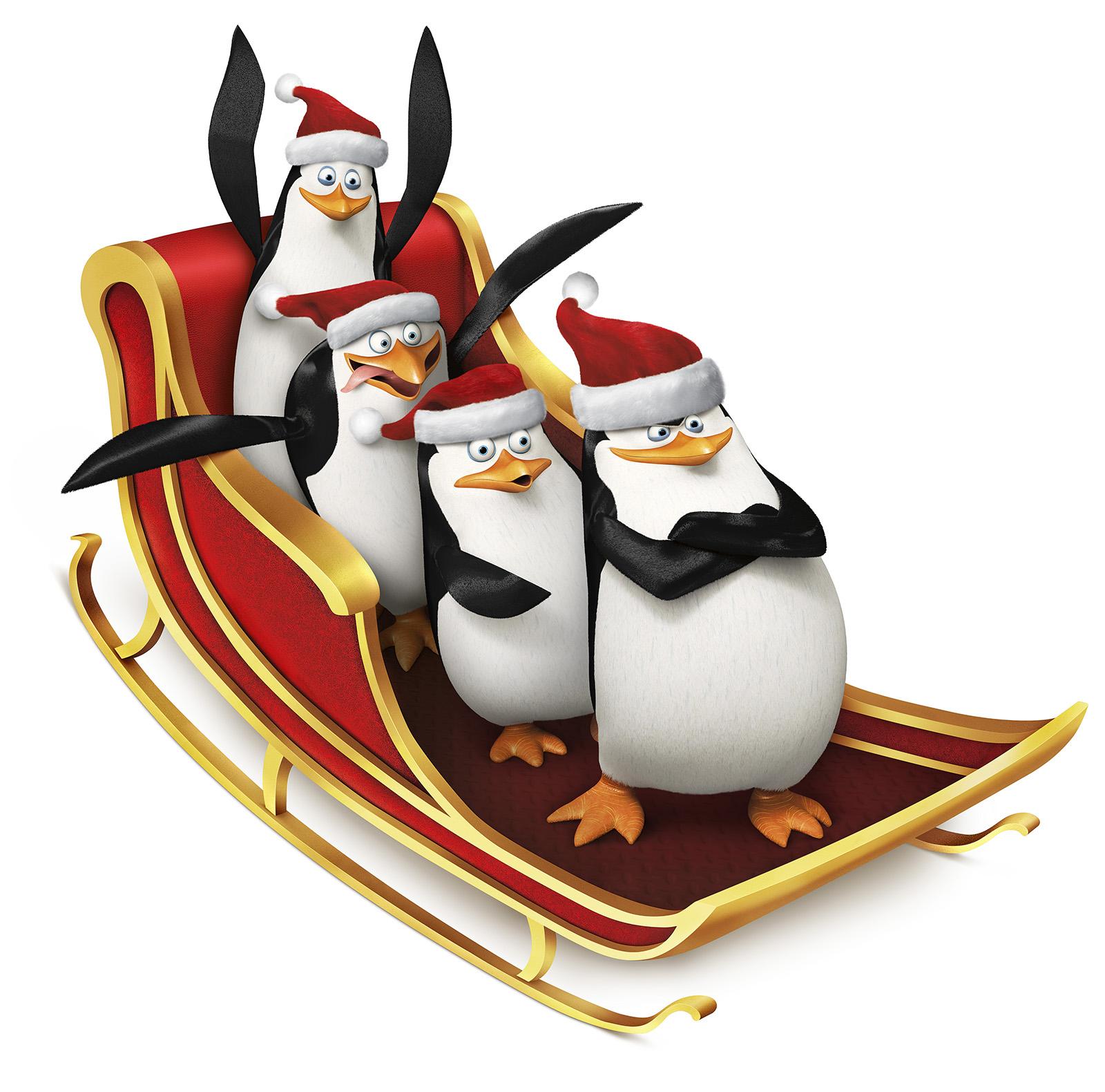 Bild von Die Pinguine aus Madagascar - Bild 40 auf 63