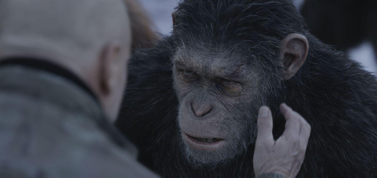 Planet Der Affen Ganzer Film Deutsch