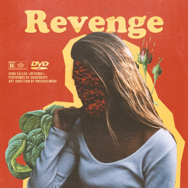 REVENGE COVER VERSION