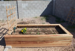A picture of a raised garden box I built