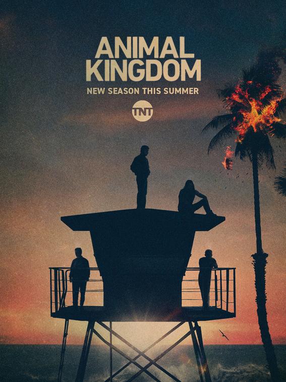 Animal Kingdom Season 4 Streaming : animal, kingdom, season, streaming, Animal, Kingdom', Renewed, Sixth, Final, Season, Deadline