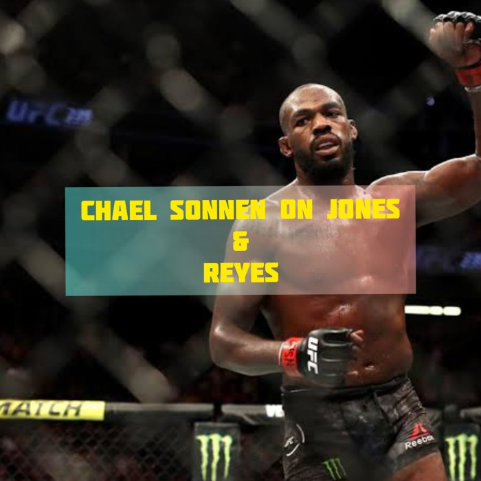 MMA's man of reason, Chael Sonnen