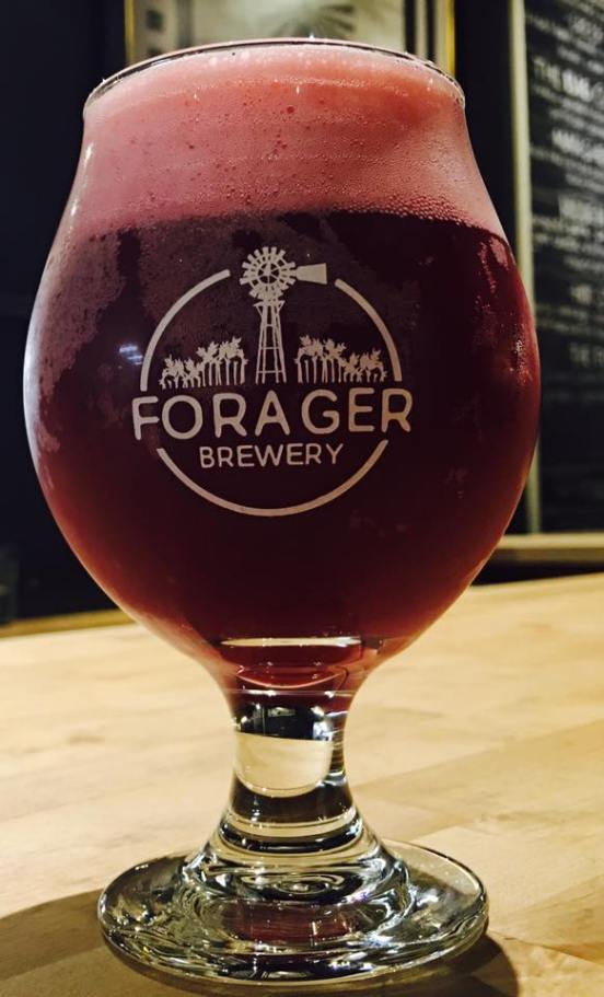 Forager Beer