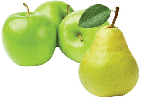 apples&pear-green
