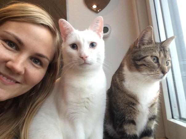 døve katte, indekatte, kattedame, kattemor, katte blog, om døve katte, adopter døv kat