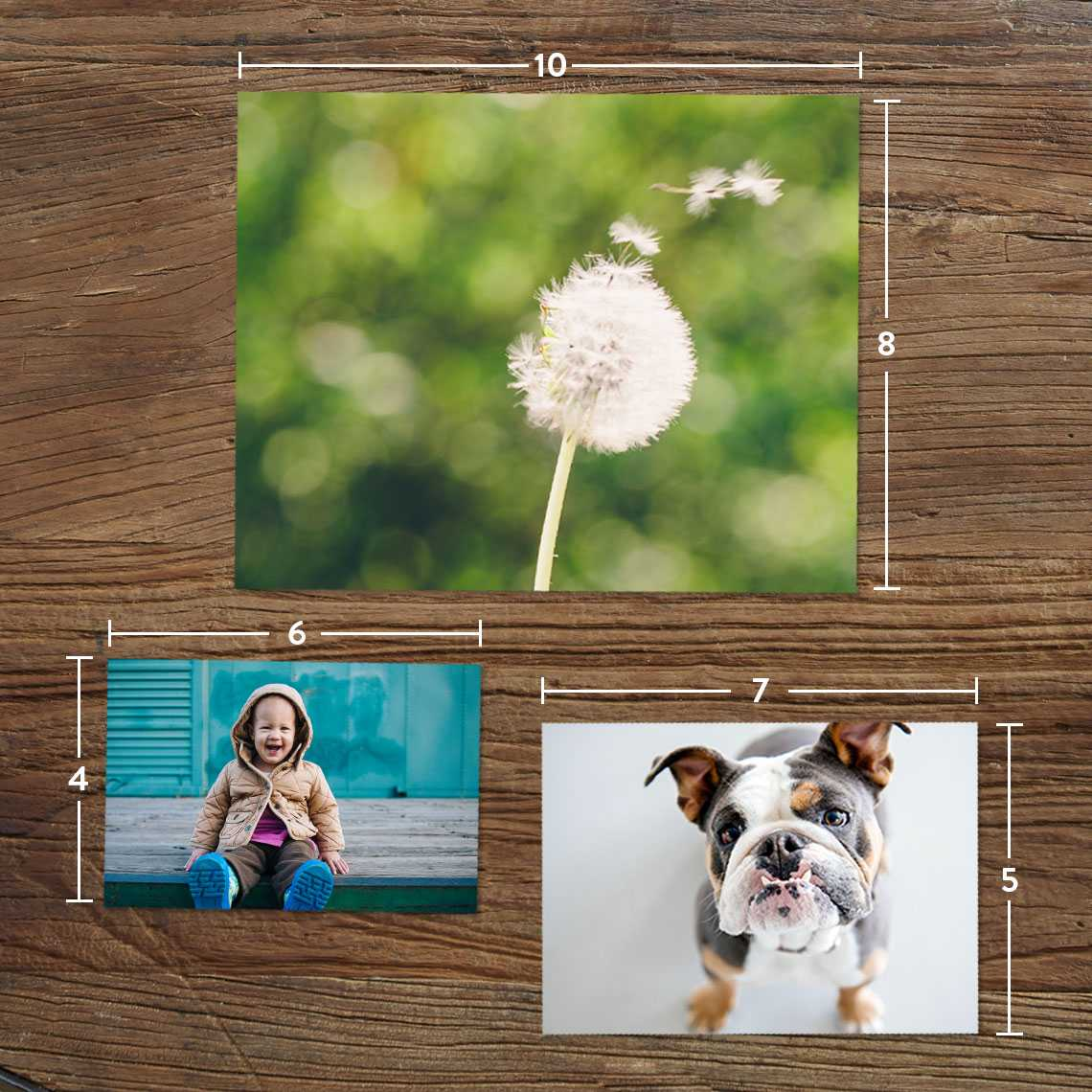 20 free 4 x 6 Photo Prints plus Free Shipping!