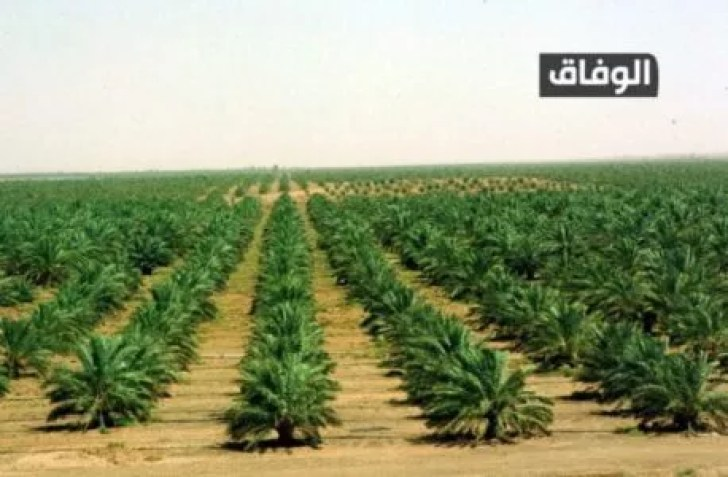 انواع التربة في الجزائر