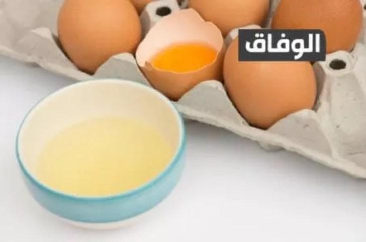 كمية البروتين في البيض