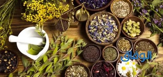 علاج دوالي الخصية دون جراحة باستخدام الأعشاب