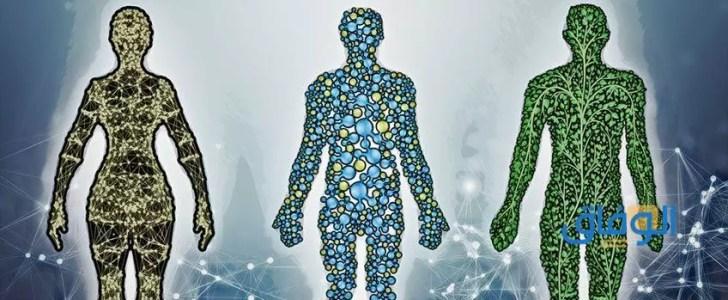 برنامج سحب السموم السريع من الجسم.