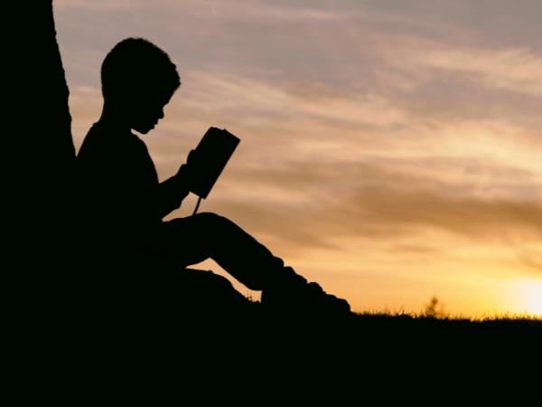 A child reads at sunset under a tree