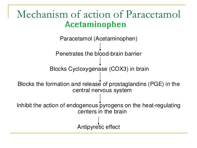 the mechanism of action of acetaminophen