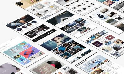 Premium Responsive WordPress Themes: Lifetime Subscription for $29