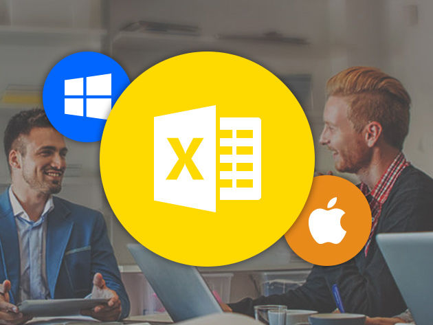 Microsoft Excel Pro Training for Mac & PC for $29