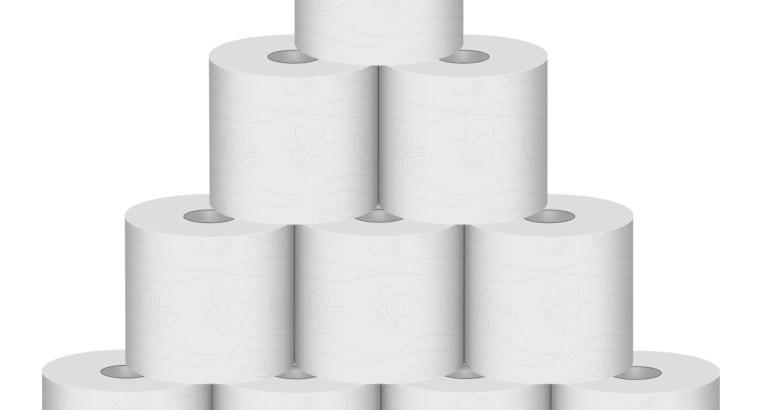 RV Toilet Paper, Rapai Dissolving & Septic Safe –