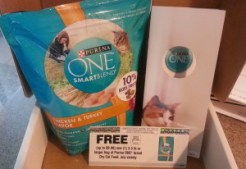 PurinaOne Smart Blend Cat Food