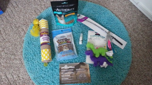 PetGiftBox - Jurassic June Box