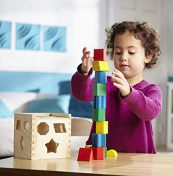 Wooden Toy With 12 Shapes 1