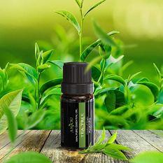 Aromatherapy Top 6 Essential Oils Set 4