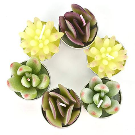 Succulent Tealight Candles, 6 Pcs 2