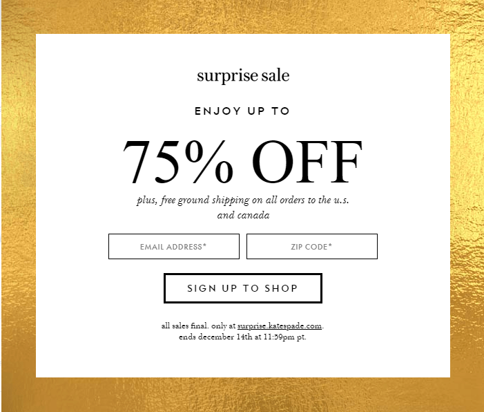 Kate Spade : 75% Off Surprise Sale!!