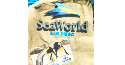 Kids Free Now Through October at SeaWorld San Diego from Get Away Today!