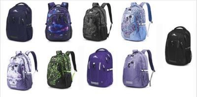 High Sierra Zestar Backpack Just $19.99 (Reg : $37.99)