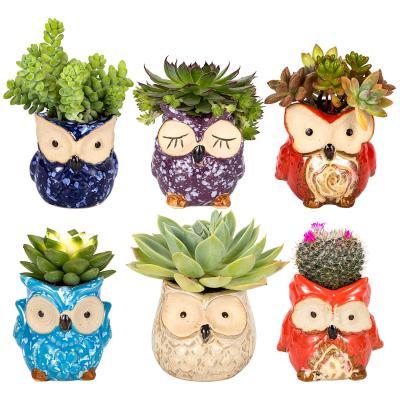 Amazon : 6 Pcs Owl Succulent Pot Ceramic Just $9.79 W/Code (Reg : $13.99) (As of 8/24/2019 6.18 PM CDT)