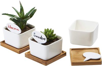 Amazon : 3 Pack 3.4 Inch White Ceramic Small Square Succulent Cactus Flower Plant Pot with Bamboo Tray Just $6.49 W/Code (Reg : $12.99) (As of 12/12/2019 8.40 PM CST)