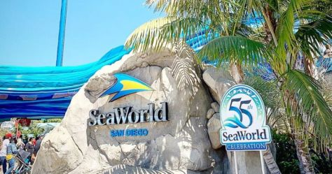 Southern California & Arizona Teachers: FREE SeaWorld Unlimited Admission Card + 2 Tickets