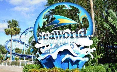 FREE 2020 SeaWorld Passes for Preschoolers (SeaWorld San Antonio & Orlando)