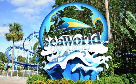 FREE 2020 SeaWorld Passes for Preschoolers (SeaWorld San Antonio & Orlando)